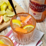 My Skinny and Seasoned Salty Dog is sweet and spicy, clocking in well under 100 calories. This citrusy recipe will you move into the dead heat of summer. | theeverykitchen.com