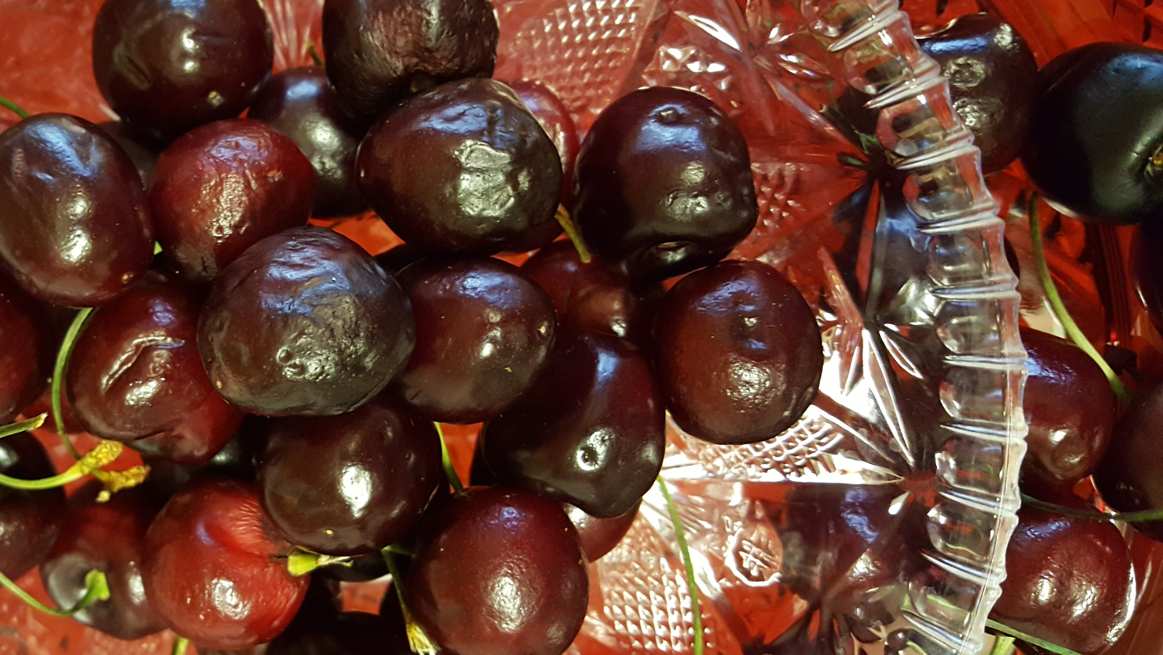 Should I throw out these cherries?