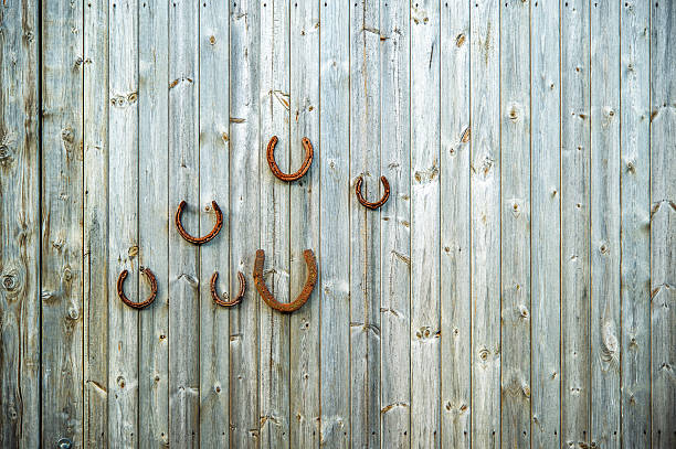 lucky horseshoes - herb seed giveaway