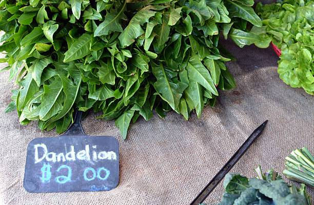 Dandelion Greens: 4 healthy reasons to eat them