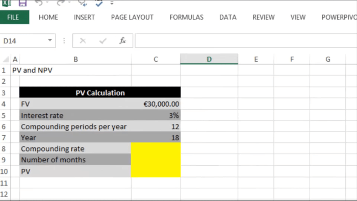learn present value in excel