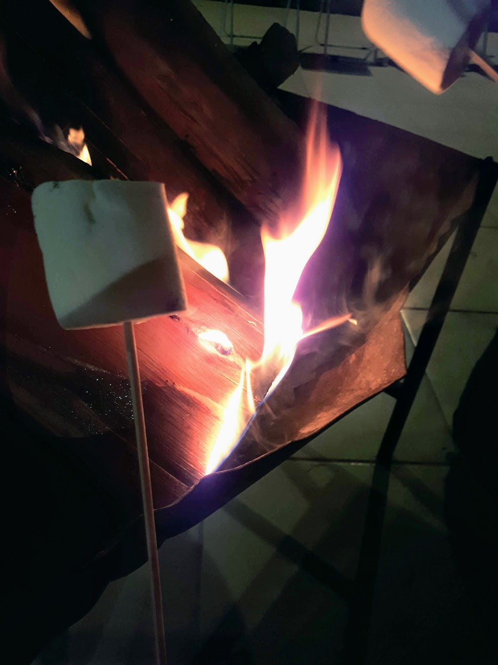 campfires and toasting marshmallows