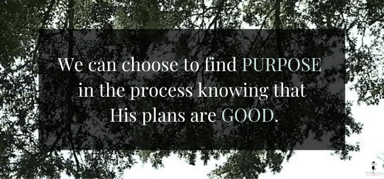 Find Purpose In The Process