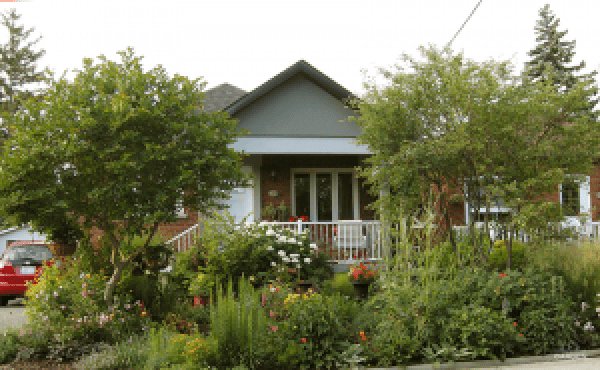 Jennifer's Front Garden circa 2014