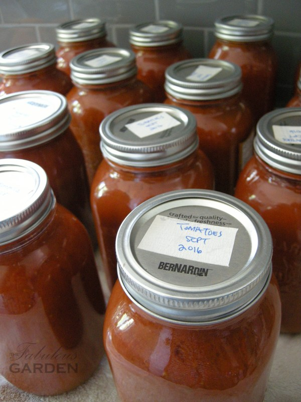 Canned jars of roasted tomatoes