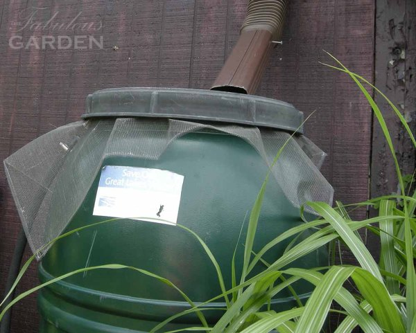 Rain barrels should be covered with a mosquito proof screen
