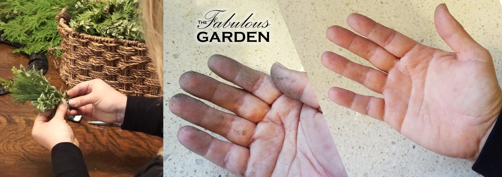Get tree sap off your hands with two ingredients from your kitchen - The  Fabulous Garden