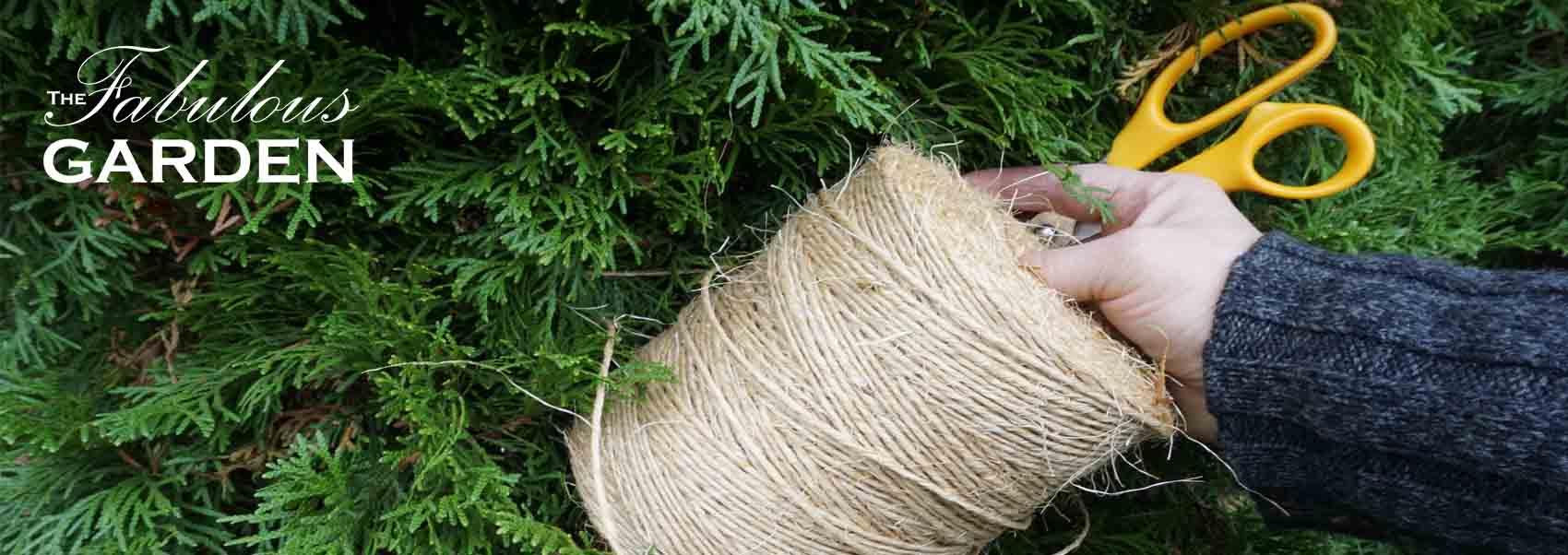 Preventing Snow & Ice Damage to Cedars