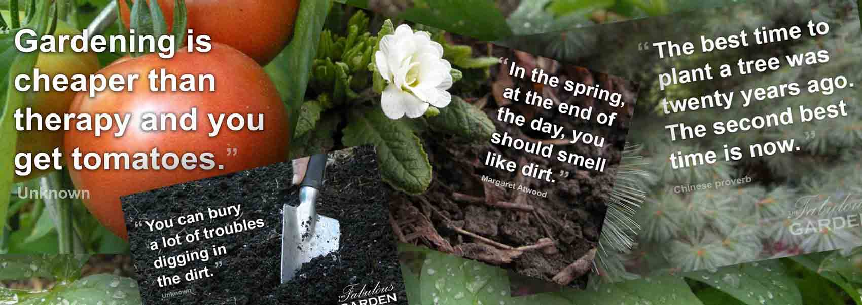 Garden quotes and sayings , The Fabulous Garden