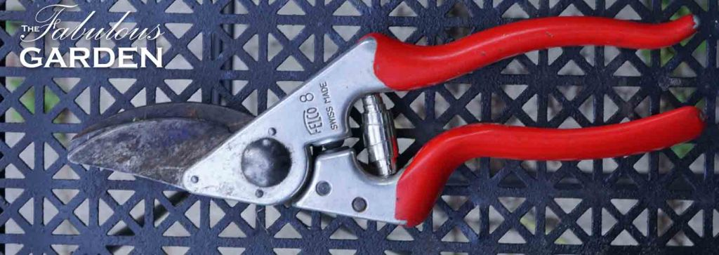 What to look for in a good pair of secateurs or pruners