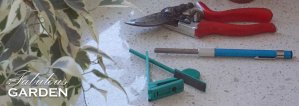 Two methods for sharpening your secateurs (aka pruners)