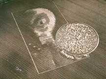 crop circles (123)