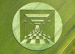crop circles (143)