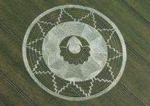 crop circles (167)