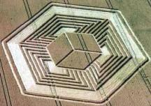 crop circles (180)