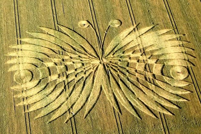 crop circles (26)