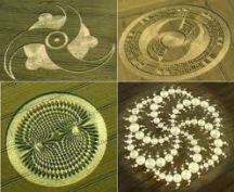 crop circles (49)