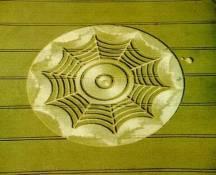 crop circles (9)