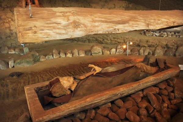 The dead were buried inside a tree trunk within the burial mounds.