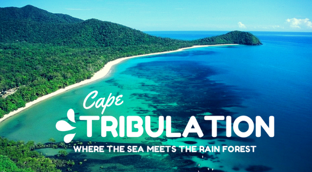 Cape-Tribulation-Australia