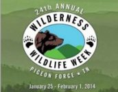 wilderness-wildlife-week-1