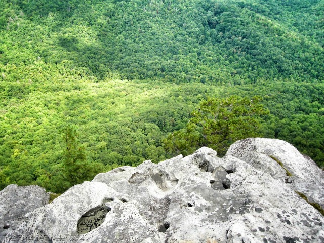 Pisgah National Forest 7