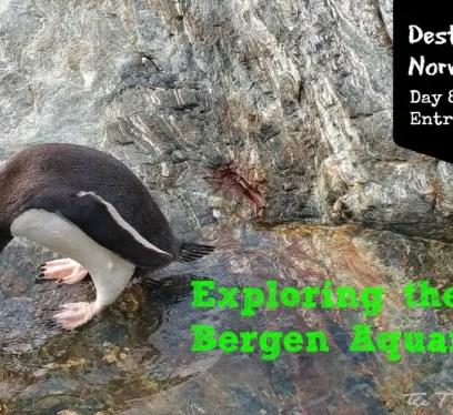 Bergen Aquarium