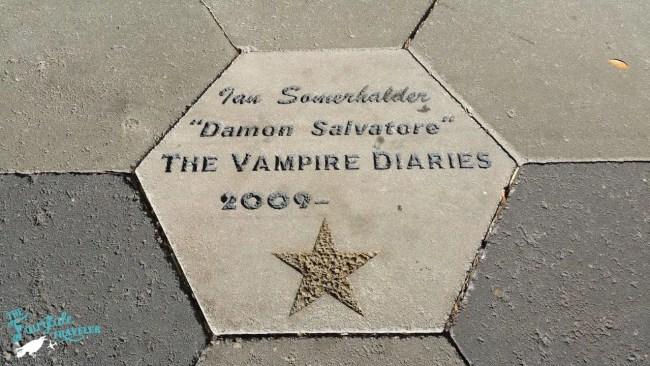 Damon Star