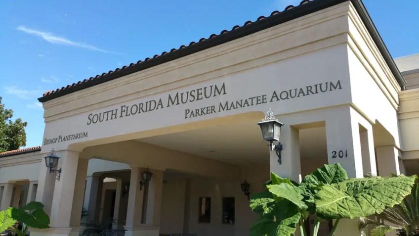 South Florida museum, bradenton, native america in bradenton