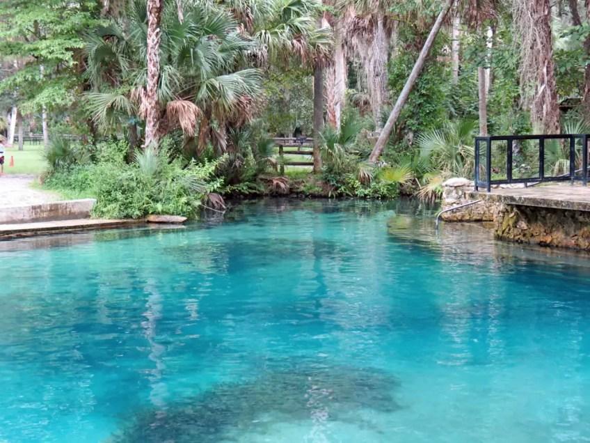 Juniper Springs