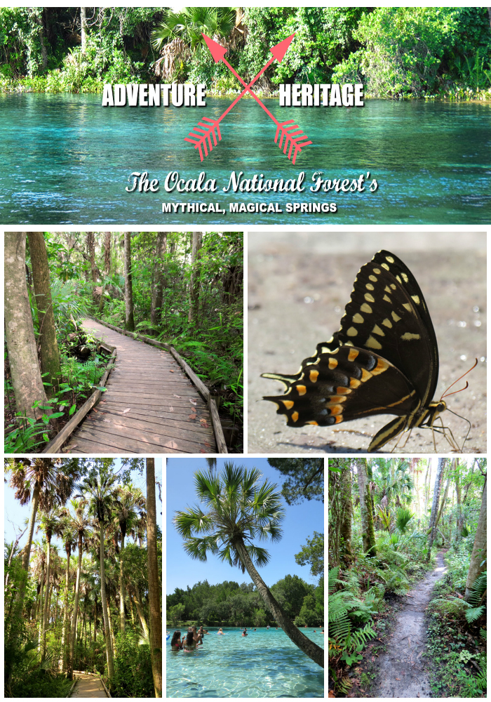 Ocala National Forest, Alexander Springs, Juniper Springs, Silver Glen Springs