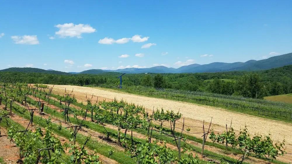 North Georgia Wine Country, Kaya Vineyards