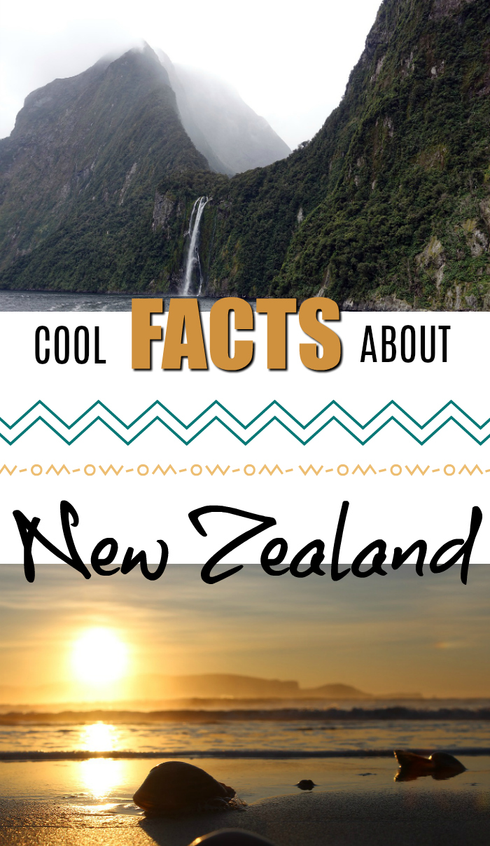 Cool facts about New Zealand - travel tips