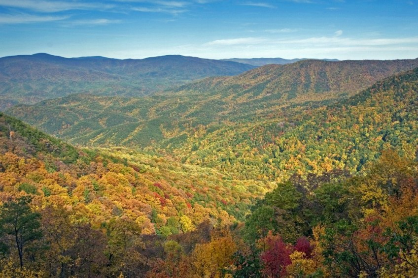 Fall in Georgia State Parks - Vogel Overlook