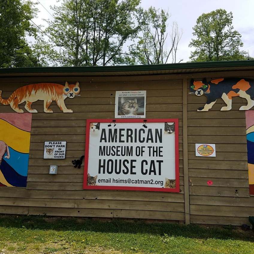 American Museum of the House Cat, North Carolina