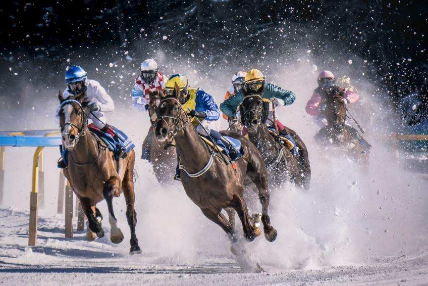 Mackinnon Stakes horse race