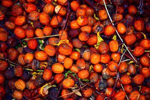 Beyond the sensory art of sorting fruit