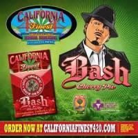 @BabyBash Marijuana Cigarettes (Bud Stop)