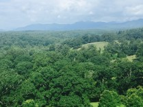 The view from Biltmore House