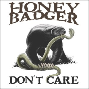Honey Badger Dont Care