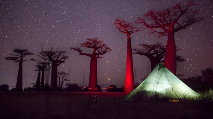 Sleeping at the Baobab Avenue (Magaskar) | The Family Without Borders