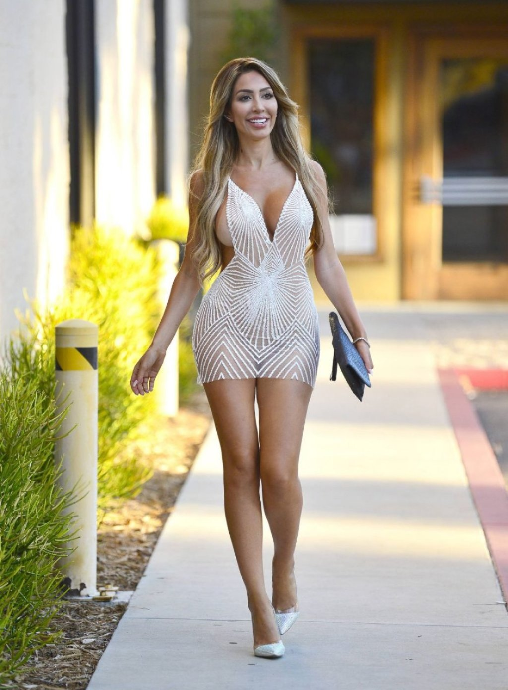 Farrah Abraham See Through (13 Photos)