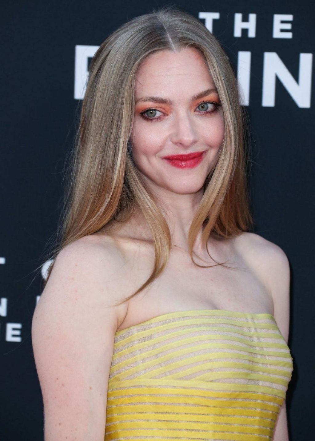 Amanda Seyfried Sexy (171 Photos)