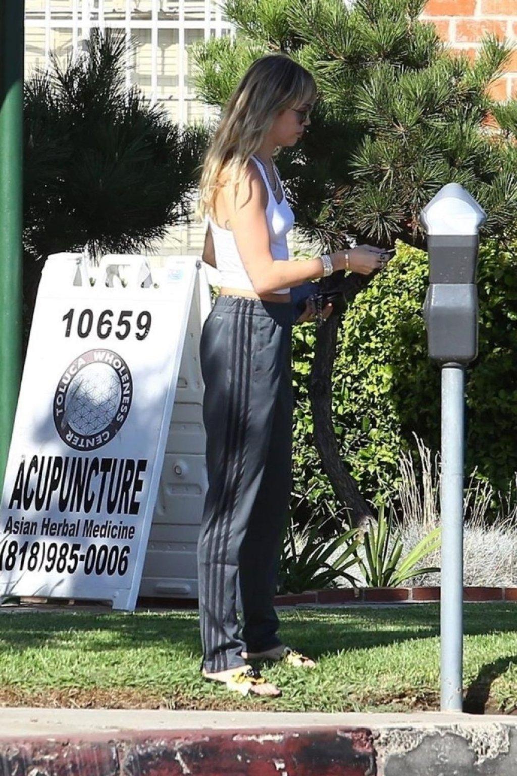 Miley Cyrus Braless (39 Photos)