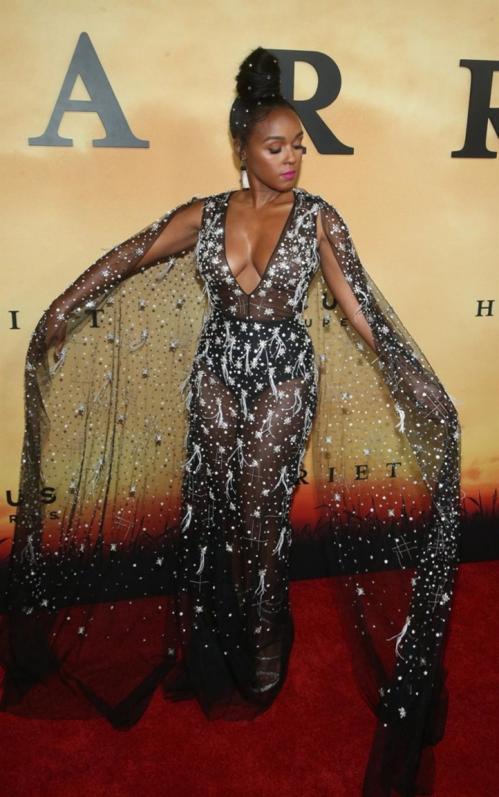 Janelle Monáe See Through (30 Photos)