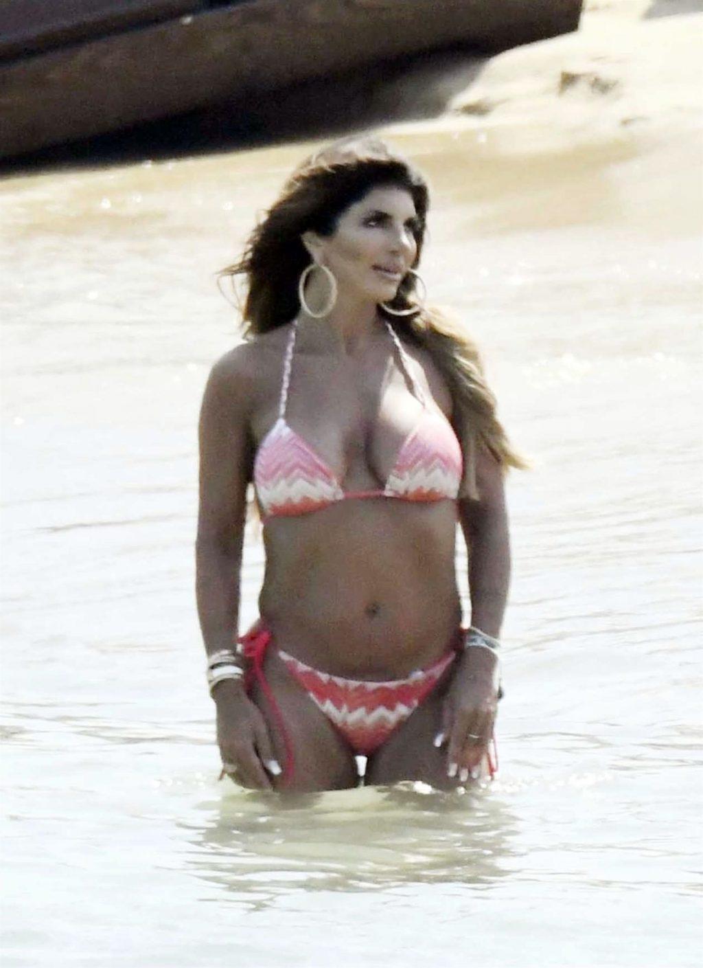 Teresa Giudice Sexy (70 Photos)