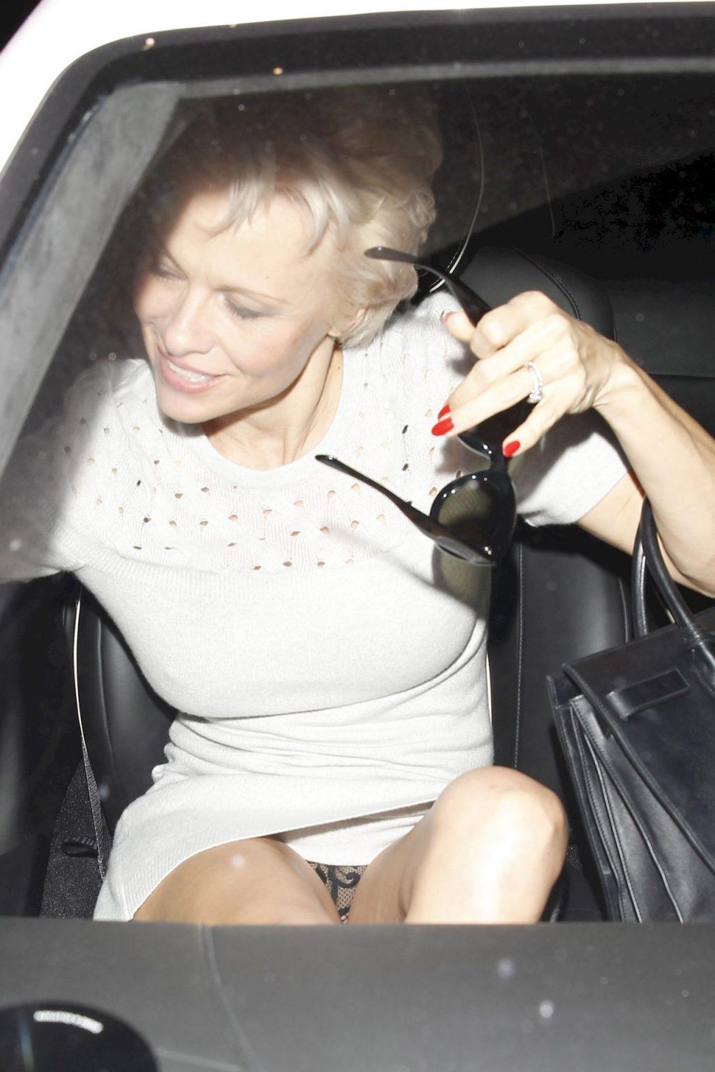 Pamela Anderson Upskirt (6 Photos)