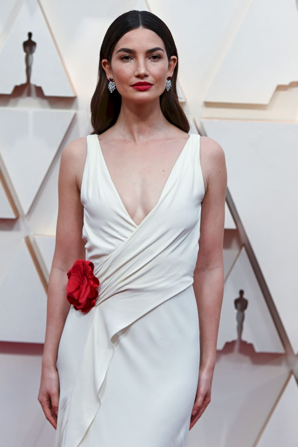 Lily Aldridge Arrives to the 92nd Academy Awards (26 Photos)