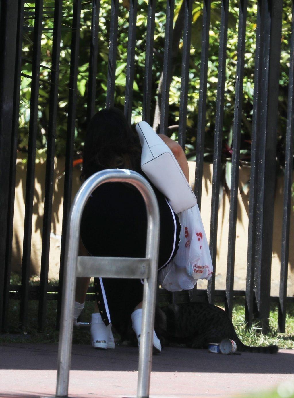 Claudia Romani Feeds the Neighborhood Cats During the Coronavirus Emergency (18 Photos)
