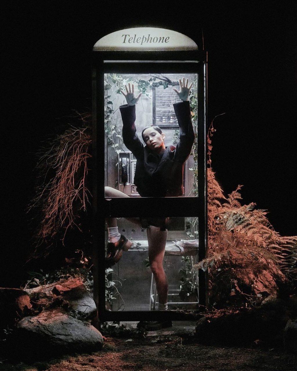 Zoe Kravitz Poses Naked with Flowers for Pop Magazine (7 Photos)